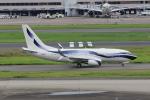 MA~RUさんが、羽田空港で撮影したインターナショナル・ジェットクラブ 737-7GV BBJの航空フォト(写真)
