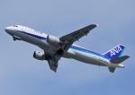 じーく。さんが、岩国空港で撮影した全日空 A320-211の航空フォト(写真)