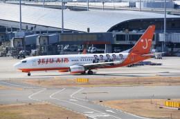 kumagorouさんが、関西国際空港で撮影したチェジュ航空 737-82Rの航空フォト(飛行機 写真・画像)