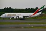 あしゅーさんが、成田国際空港で撮影したエミレーツ航空 A380-861の航空フォト(飛行機 写真・画像)