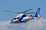 Dojalanaさんが、函館空港で撮影したオールニッポンヘリコプター AS365N3 Dauphin 2の航空フォト(飛行機 写真・画像)