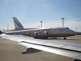 ころちゃんさんが、中部国際空港で撮影したアントノフ・エアラインズ An-124-100 Ruslanの航空フォト(飛行機 写真・画像)