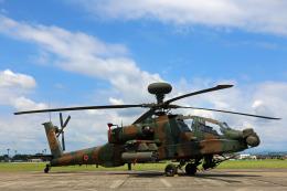 Wasawasa-isaoさんが、宇都宮飛行場で撮影した陸上自衛隊 AH-64Dの航空フォト(写真)