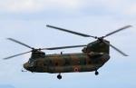 Wasawasa-isaoさんが、宇都宮飛行場で撮影した陸上自衛隊 CH-47Jの航空フォト(写真)