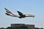 おかめさんが、成田国際空港で撮影したエミレーツ航空 A380-861の航空フォト(写真)