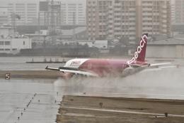 飛龍さんが、福岡空港で撮影したピーチ A320-214の航空フォト(飛行機 写真・画像)