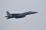 Fat Methenyさんが、茨城空港で撮影した航空自衛隊 F-15J Eagleの航空フォト(写真)