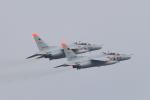 Fat Methenyさんが、茨城空港で撮影した航空自衛隊 T-4の航空フォト(写真)