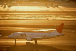 sepia2016さんが、羽田空港で撮影したジェイ・エア ERJ-170-100 (ERJ-170STD)の航空フォト(写真)