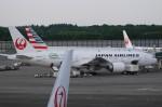 furaibo123さんが、成田国際空港で撮影した日本航空 777-246/ERの航空フォト(写真)