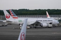 furaibo123さんが、成田国際空港で撮影した日本航空 777-246/ERの航空フォト(飛行機 写真・画像)
