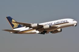 k-spotterさんが、フランクフルト国際空港で撮影したシンガポール航空 A380-841の航空フォト(写真)