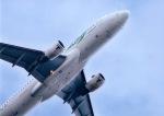 takamaruさんが、静岡空港で撮影したスカイウィングス・アジア・エアラインズ A320-212の航空フォト(飛行機 写真・画像)