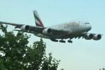 トシさんさんが、成田国際空港で撮影したエミレーツ航空 A380-861の航空フォト(写真)