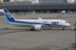 職業旅人さんが、羽田空港で撮影した全日空 787-8 Dreamlinerの航空フォト(写真)