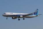 EXIA01さんが、米子空港で撮影した全日空 A321-211の航空フォト(写真)