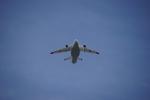 yasu-mkysさんが、府中基地で撮影した航空自衛隊 XC-2の航空フォト(写真)