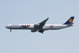 SKYLINEさんが、羽田空港で撮影したルフトハンザドイツ航空 A340-642の航空フォト(写真)