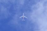 多楽さんが、仙台空港で撮影したアシアナ航空 747-446F/SCDの航空フォト(写真)