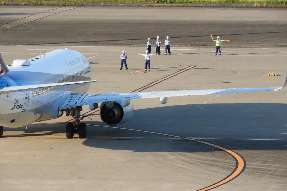 timeさんの全日空 Boeing 737-800 (JA55AN) 航空フォト