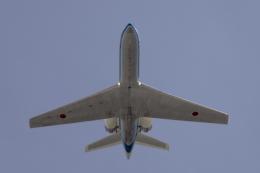 府中基地 - Fuchu Airbase [RJTZ]で撮影された府中基地 - Fuchu Airbase [RJTZ]の航空機写真