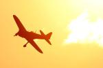 龍ヶ崎飛行場 - Ryugasaki Airfieldで撮影されたゼロエンタープライズ - ZERO ENTERPRISE INC TRUSTEEの航空機写真