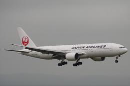 小牛田薫さんが、新千歳空港で撮影した日本航空 777-246の航空フォト(飛行機 写真・画像)