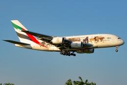 Ariesさんが、成田国際空港で撮影したエミレーツ航空 A380-861の航空フォト(写真)