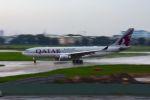 まいけるさんが、タンソンニャット国際空港で撮影したカタール航空 A330-202の航空フォト(写真)