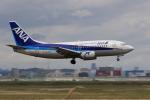 多楽さんが、仙台空港で撮影したANAウイングス 737-5L9の航空フォト(写真)