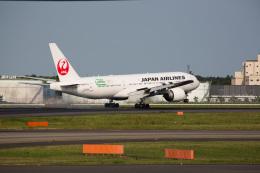 chalk2さんが、成田国際空港で撮影した日本航空 777-246/ERの航空フォト(写真)