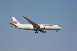 chalk2さんが、成田国際空港で撮影した日本航空 787-8 Dreamlinerの航空フォト(写真)