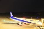 いんふぃさんが、岡山空港で撮影した全日空 A321-211の航空フォト(写真)
