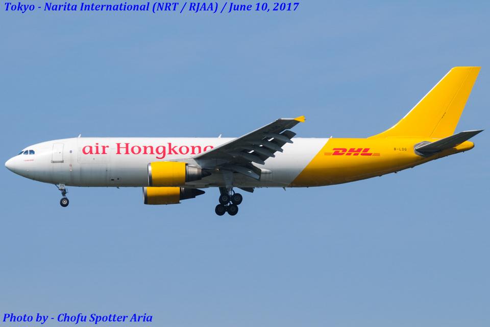 Chofu Spotter Ariaさんのエアー・ホンコン Airbus A300-600 (B-LDG) 航空フォト