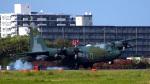 rcflash.FMさんが、厚木飛行場で撮影した航空自衛隊 C-130H Herculesの航空フォト(写真)
