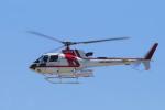 yabyanさんが、名古屋飛行場で撮影した朝日航洋 AS350B3 Ecureuilの航空フォト(飛行機 写真・画像)