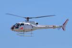 yabyanさんが、名古屋飛行場で撮影した中日本航空 AS350B1 Ecureuilの航空フォト(飛行機 写真・画像)