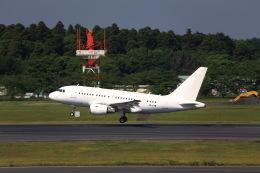 T.Sazenさんが、成田国際空港で撮影したケイマン諸島企業所有 A318-112 CJ Eliteの航空フォト(写真)