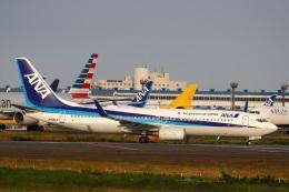 sky-spotterさんが、成田国際空港で撮影した全日空 737-881の航空フォト(飛行機 写真・画像)