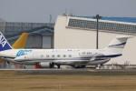 OS52さんが、成田国際空港で撮影したメリディアナ・エア G350/G450の航空フォト(写真)