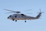 yabyanさんが、名古屋飛行場で撮影した海上自衛隊 SH-60Jの航空フォト(写真)