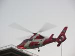 kamonhasiさんが、静岡ヘリポートで撮影した浜松市消防航空隊 AS365N3 Dauphin 2の航空フォト(写真)