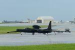 うめやしきさんが、嘉手納飛行場で撮影したアメリカ空軍 U-2S Dragon Ladyの航空フォト(写真)