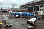 うめやしきさんが、那覇空港で撮影した日本トランスオーシャン航空 737-4Q3の航空フォト(飛行機 写真・画像)