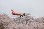 mameshibaさんが、成田国際空港で撮影した香港エクスプレス A320-214の航空フォト(写真)