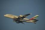 flying-dutchmanさんが、ドバイ国際空港で撮影したエミレーツ航空 A380-861の航空フォト(写真)