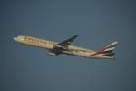 flying-dutchmanさんが、ドバイ国際空港で撮影したエミレーツ航空 777-31H/ERの航空フォト(写真)