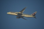 flying-dutchmanさんが、ドバイ国際空港で撮影したカタール航空 787-8 Dreamlinerの航空フォト(写真)