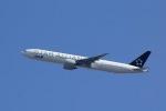 Yossy96さんが、伊丹空港で撮影した全日空 777-381/ERの航空フォト(写真)