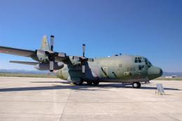 triton@blueさんが、米子空港で撮影した航空自衛隊 C-130H Herculesの航空フォト(飛行機 写真・画像)